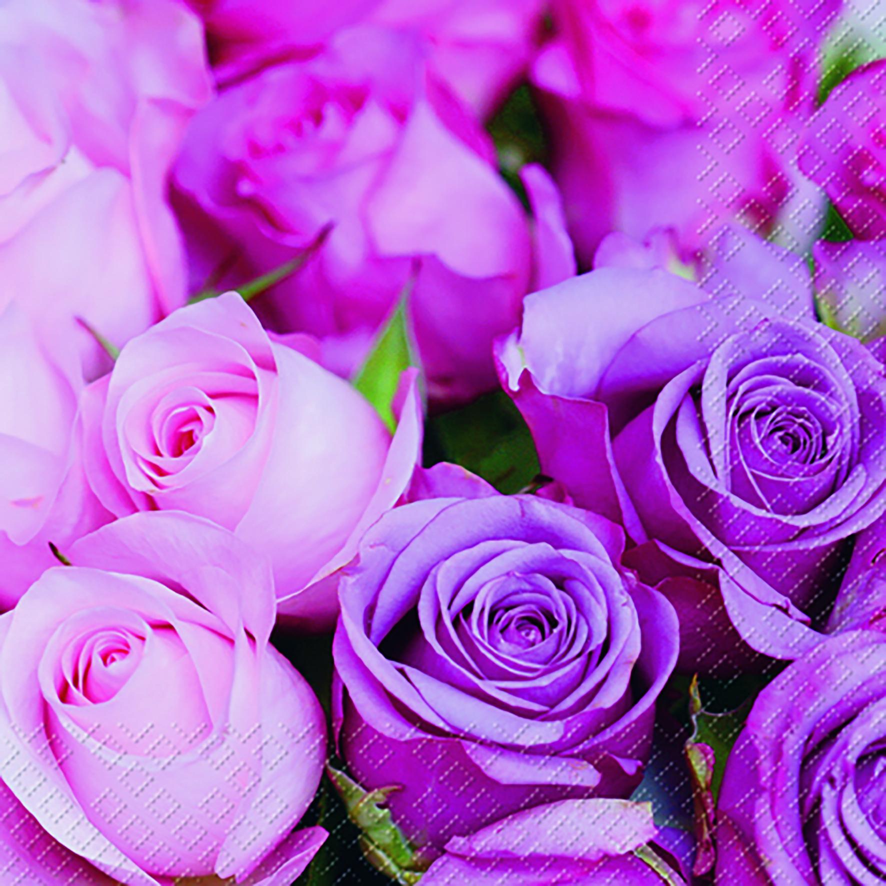 stewo AG,  Blumen -  Sonstige,  Blumen - Rosen,  Blumen,  Everyday,  lunchservietten