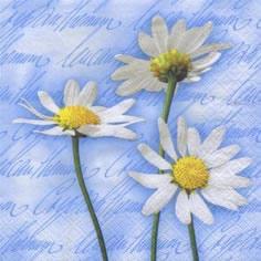 ti-flair,  Blumen -  Sonstige,  Blumen - Magariten,  Blumen,  Everyday,  cocktail servietten