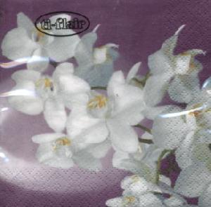 Servietten 25 x 25 cm,  Blumen - Orchideen,  Everyday,  cocktail servietten,  Orchideen