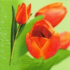 20 Servietten - 25 x 25 cm Tulipe,  Blumen - Tulpen,  Frühjahr,  cocktail servietten,  Tulpen