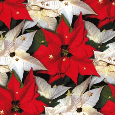 Lunch Servietten Poinsettia with Stars,  Weihnachten - Weihnachtsstern,  Weihnachten,  lunchservietten,  Weihnachtsstern