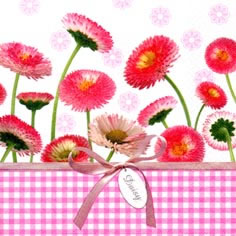 20 Servietten - 33 x 33 cm Daisy & Vichy pink,  Blumen,  lunchservietten,  Gänseblümchen