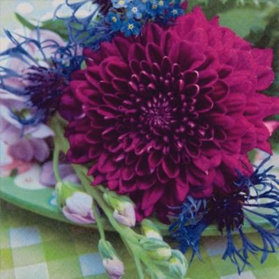 20 Servietten - 33 x 33 cm ,  Blumen - Dalien,  Everyday,  lunchservietten,  Dahlien