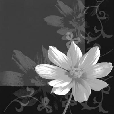Lunch Servietten Ombra Fiore, Sonstiges -  Sonstiges,  Blumen -  Sonstige,  Blumen,  Everyday,  lunchservietten,  Blumen,  schwarz,  weiß