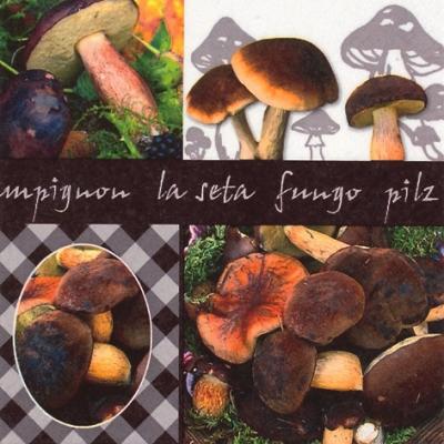 Lunch Servietten La Seta,  Früchte - Pilze,  Herbst,  lunchservietten,  Steinpilze