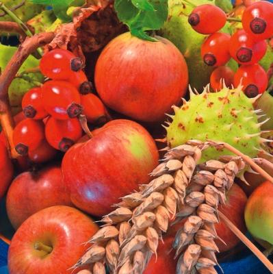 Everyday,  Früchte - Kastanien,  Früchte - Äpfel,  Herbst,  lunchservietten,  Äpfel,  Hagebutten