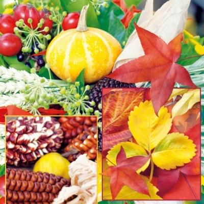 Servietten / Früchte,  Früchte - Zapfen,  Früchte - Kürbisse,  Herbst - Blätter / Laub,  Herbst,  lunchservietten,  Zapfen,  Blätter,  Kürbisse