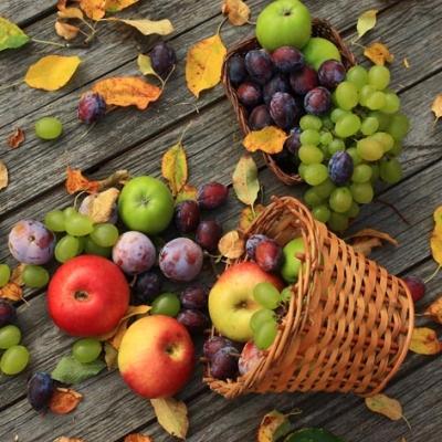Servietten,  Früchte - Weintrauben,  Früchte - Äpfel,  Herbst,  lunchservietten,  Weintrauben,  Äpfel