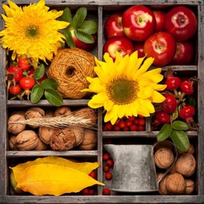 Lunch Servietten Autumn Composition,  Früchte - Nüsse,  Früchte - Äpfel,  Blumen - Sonnenblumen,  Herbst,  lunchservietten,  Beeren,  Nüsse,  Sonnenblume
