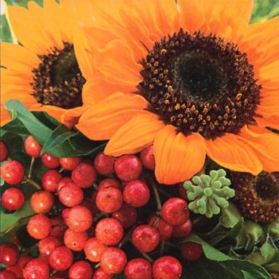 20 Servietten - 33 x 33 cm Sunny Day,  Früchte -  Sonstige,  Blumen - Sonnenblumen,  Herbst,  lunchservietten,  Sonnenblume
