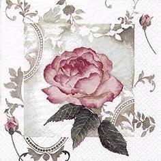 Lunch Servietten Enchanting Rose Vintage rosé