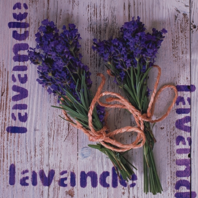 Lunch Servietten Lavande,  Blumen - Lavendel,  Everyday,  lunchservietten,  Lavendel