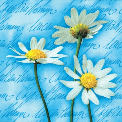 20 Servietten - 33 x 33 cm Blooming Daisies blue,  Blumen - Magariten,  Everyday,  lunchservietten,  Blumen