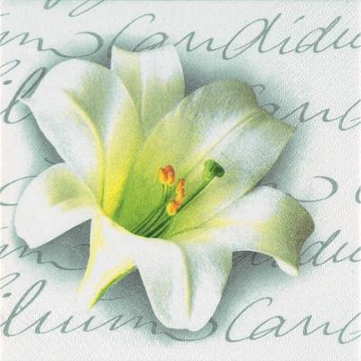 20 Servietten - 33 x 33 cm Lilium Candidum anthracite,  Sonstiges - Schriften,  Blumen -  Sonstige,  Everyday,  lunchservietten,  Lilie
