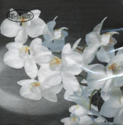 Lunch Servietten Orchidea Bianca black