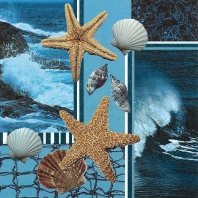 20 Servietten - 33 x 33 cm Costa Marina,  Tiere -  Sonstige,  Regionen - Strand / Meer,  Regionen - Strand / Meer - Muscheln,  Everyday,  lunchservietten,  Seesterne