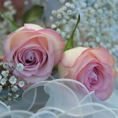 Lunch Servietten Ambiance Romantique,  Ereignisse - Hochzeit,  Blumen - Rosen,  Everyday,  lunchservietten,  Rosen,  Hochzeit