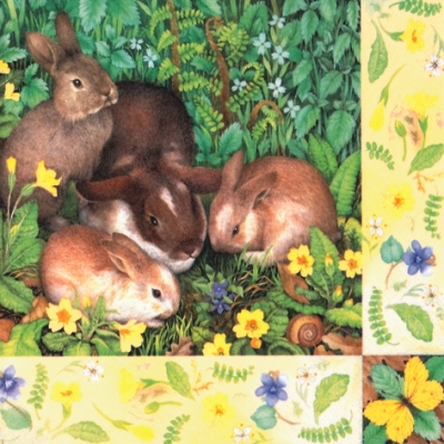 Lunch Servietten Four Bunnies,  Blumen - Primeln,  Tiere - Hasen,  Ostern,  lunchservietten