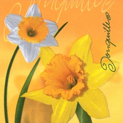 20 Servietten - 33 x 33 cm Jonquille,  Blumen - Osterglocken,  Frühjahr,  lunchservietten,  Narzissen