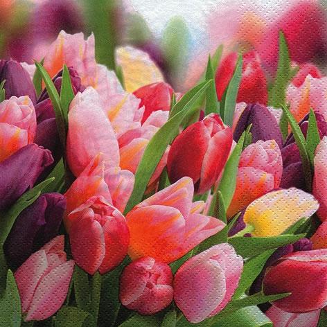 Lunch Servietten Pink & Violet Tulips