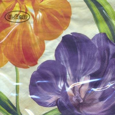 Lunch Servietten Tulpiani Fioriti,  Blumen - Tulpen,  Frühjahr,  lunchservietten,  Tulpen